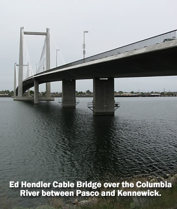 Ed Hendler Cable Bridge