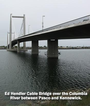 Ed Hendler Cable Bridge