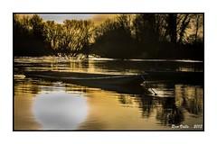 Contre jour sur la Loire... photo by RV1902