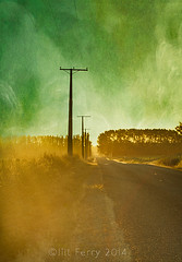 Country road photo by borealnz