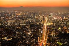 Tokyo City Skyline with Mt. Fuji at Twilight photo by TOTORORO.RORO