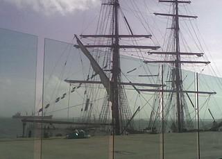 haddock cropped reduzida