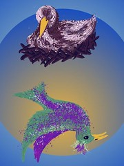2-bird-rev