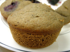 muffin without berries