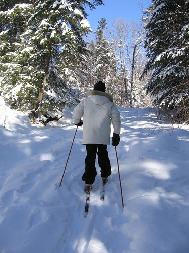 Skiing in the Haliburton Forest, Haliburton, Ontario