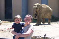 Mommy, Nathan and elephant