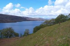 Loch Maree singletrack