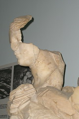 Head of the Statue