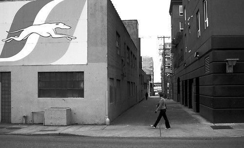 Go Greyhound, shot with a small Sony pocket camera, ©2006 Jim Scolman
