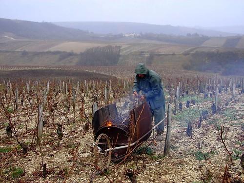 Loire Dec 05 224