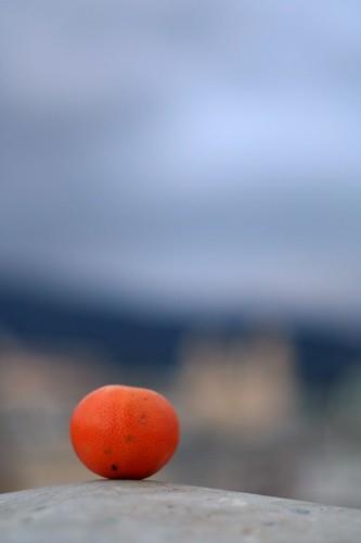 Bastia's clementine