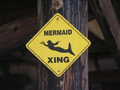 Watch For Mermaids