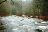the rushing snoqualmie river (by vsz)