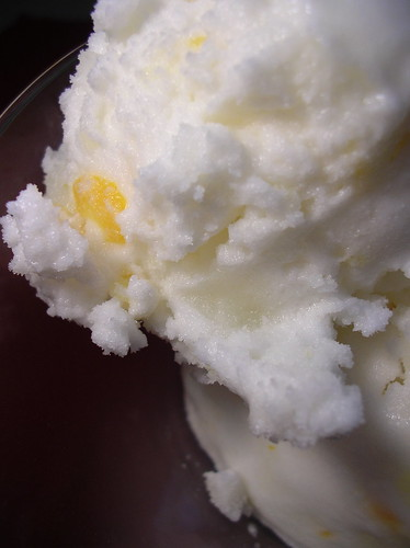 Meyer lemon sorbet