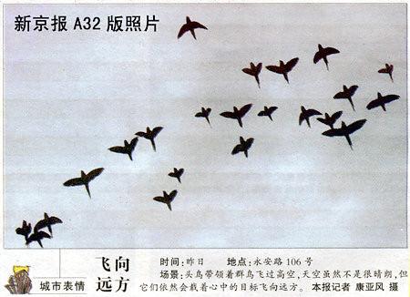 2005_1230831