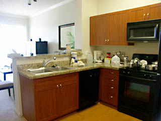 River Terrace: kitchen