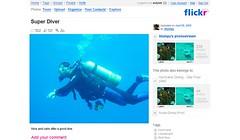 Flickr diver