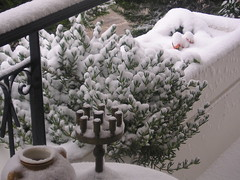 Χιόνι, σήμερα