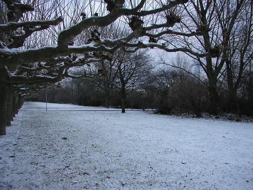 January 2006 Snow 006