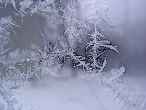 frost on the window, too