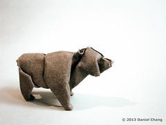 Brown Bear photo by mitanei