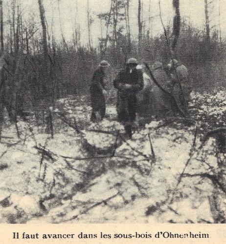 BM 21 - 1945- Alsace- Sous-bois d'Ohnenheim- Source - 1ere dfl épopée d'une reconquete