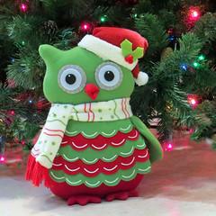 Xmas Owl photo by njchow82