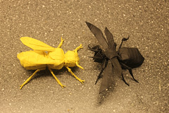 wasp 2.6 Vs Yellow Jacket photo by EyeRock`s Origami