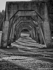 tunnel photo by jorin.arriola
