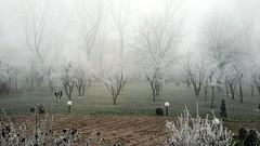 Winter in Kosovo photo by vegamaster