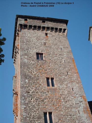 Château de Pesteil à Polminhac (15) Le donjon 3