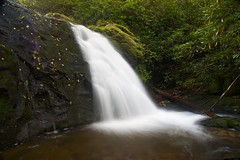 Upper Meigs Creek Falls, Great Smoky Mountains [Explored] photo by repete7 (been away)