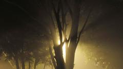 Sombras photo by Naiknatt
