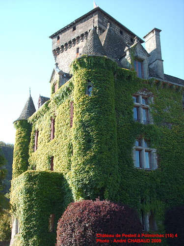 Château de Pesteil à Polminhac (15) 4