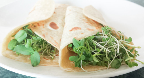 Microgreen Burrito