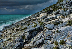 Ancient Lithified Bahamian Dune  [explored 1-31-14] photo by trishhartmann