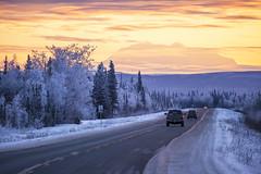 Driving Towards Denali photo by Critter Seeker