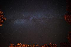 Milky Way Framed photo by Gary Breashears