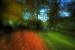 Nature's Free Spirit photo by SJ Wray Photography