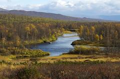 Day 8: Hiking to Abiskojaure photo by Gregor  Samsa