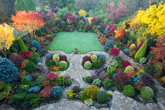 Garden colours in late autumn (November 4th) photo by Four Seasons Garden