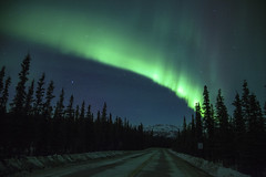 Northern Lights Road Trip photo by Critter Seeker