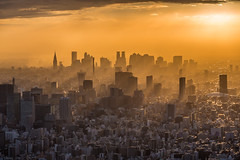 Sunset in Shinjuku 2 photo by davidcl0nel