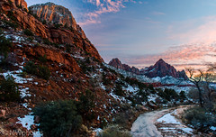 Zion Canyon National Park photo by n4rwhals