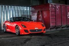 Yo, GTO. photo by Alex Penfold