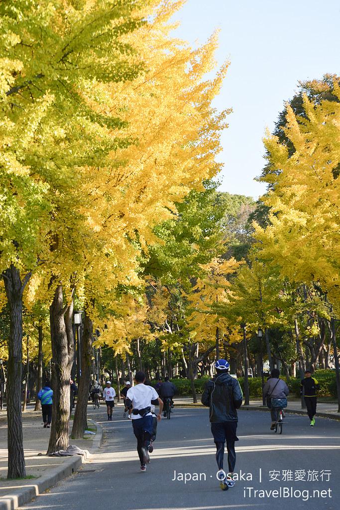 《大阪景点推荐》日本大阪城公园:体验秋天银杏片片与庶民日常生活的公园。