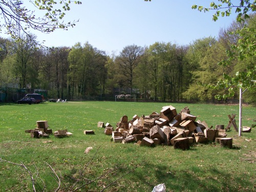9210132224 f4ed025ee9 Groundhoppen: De Wageningse Berg