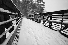 Foot bridge, winter photo by Don Seymour