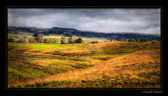 Upcountry Overcast photo by Randall Harrison