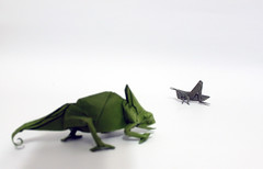 The law of survival photo by paper folding artist redpaper